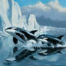 Killer Whales Cross Stitch Pattern Arctic