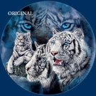 White Tigers Cats Cross Stitch Pattern ETP