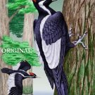 Ivory Billed Woodpecker 1 Cross Stitch Pattern Birds ~ETP~