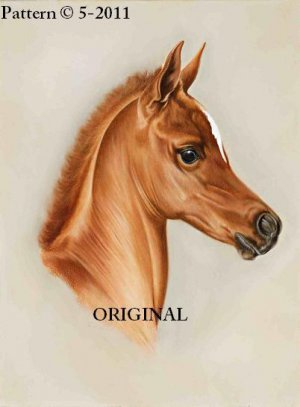 Portrait of a Foal Cross Stitch Pattern Horses ~ETP~