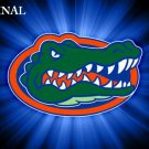 Florida Gators #2 Cross Stitch Pattern NFL Football ~ETP~