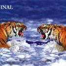 Fighting Tigers Cross Stitch Pattern Cats ~ETP~