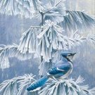 Blue Jay in Winter Cross Stitch Pattern Birds ~ETP~