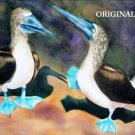 Blue Footed Booby Cross Stitch Pattern Sea Bird ETP