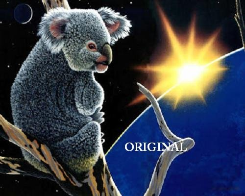 Cuddly Koala Cross Stitch Pattern Bears Australia ETP