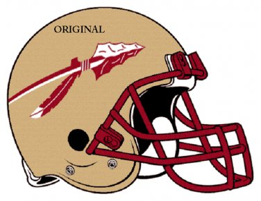 Florida State Seminoles Helmet Cross Stitch Pattern Football ETP