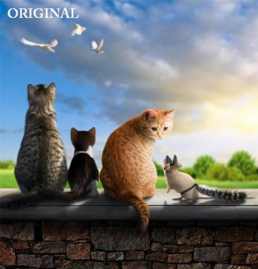 Odd Cat Out... ~Counted~ Cross Stitch Pattern ETP