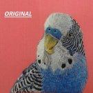 Blue Parakeet... ~Counted~ Cross Stitch Pattern ETP