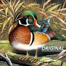 Wood Duck... ~Counted~ Cross Stitch Pattern ETP