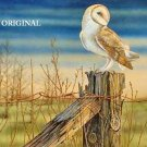 Pretty Barn Owl... ~Counted~ Cross Stitch Pattern ~Computer Generated~... Birds... ETP