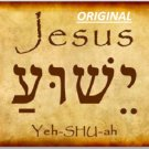 Jesus Yeshuah Hebrew... ~Counted~ Cross Stitch Pattern~ Bead Tapestry Pattern ~Computer Generated~