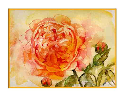 Set of Eight Watercolor English Rose Greeting Cards Notecards Note Cards