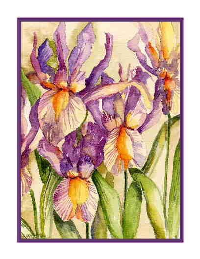 Watercolor Dutch Irises Greeting Note Cards Notecards Set of Eight
