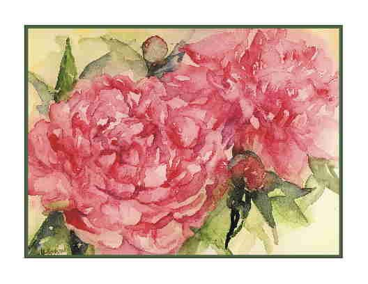 Watercolor Pink Peonies Greeting Note Cards Notecards 8