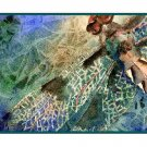 Watercolor Dragonfly Greeting Note Cards Notecards