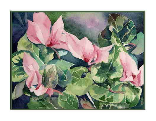 8 Watercolor Cyclamen Flowers Greeting Note Cards Notecards