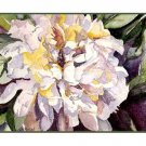 Set of Eight Watercolor Large White Peony Greeting Notecards Note Cards
