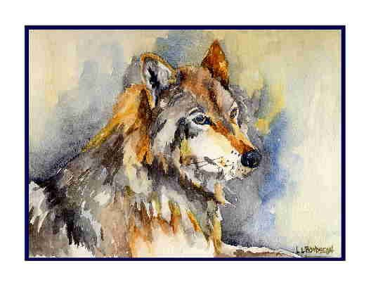 Set of Eight Watercolor Eye of a Wolf Greeting Note Cards Notecards