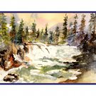 8 Glacier National Park Avalanche Trail Notecards Note cards