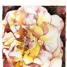 Original Watercolor In Full Bloom Rose Painting