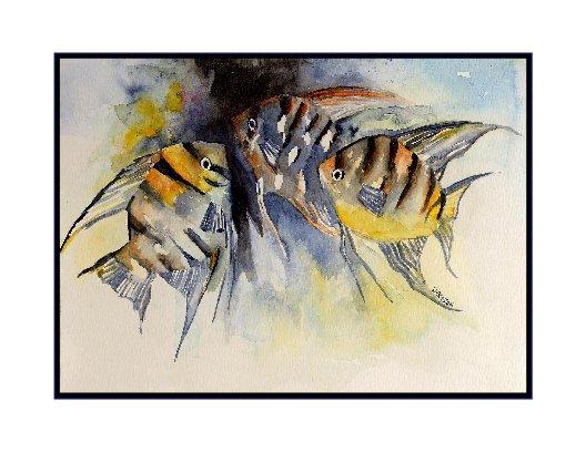 Watercolor Angelfish Cards Notecards