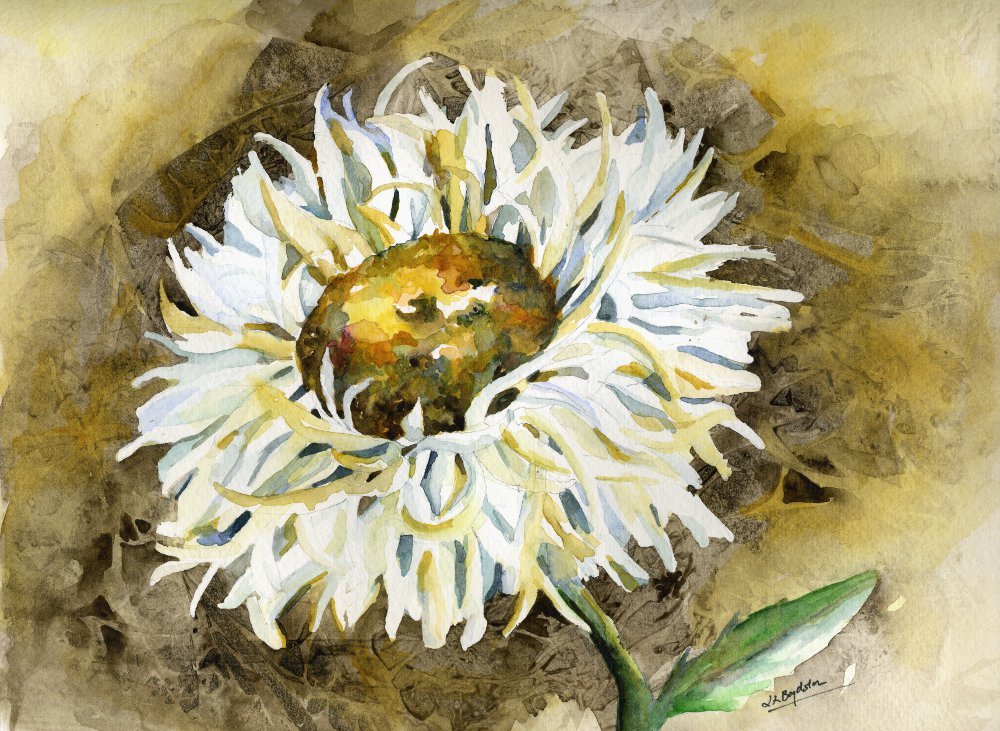 Original Watercolor Shasta Daisy Painting