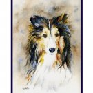 Watercolor Sheltie Dog Notecards Notecards