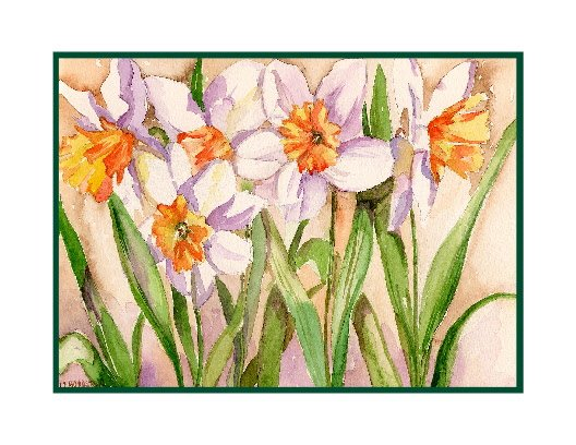 Watercolor White Daffodils Note Cards Notecards