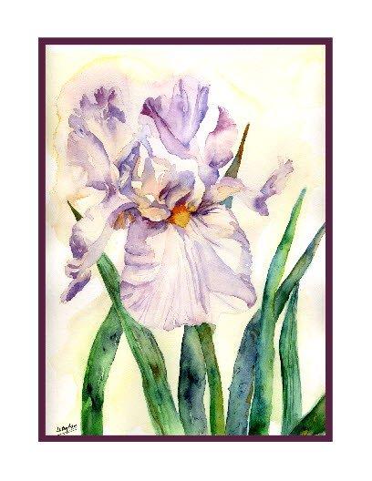 Watercolor Lavender Iris Notecards