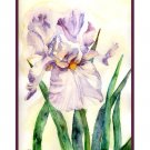 Watercolor Lavender Iris Notecards