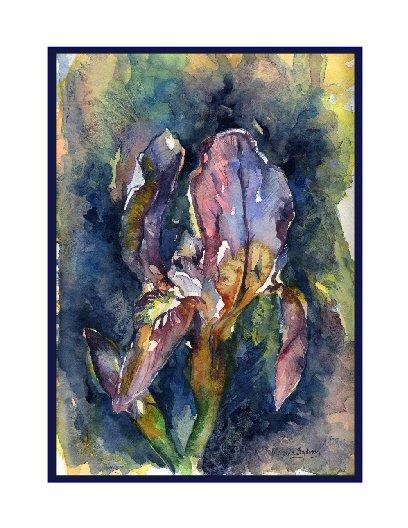 Watercolor Dwarf Iris Cards