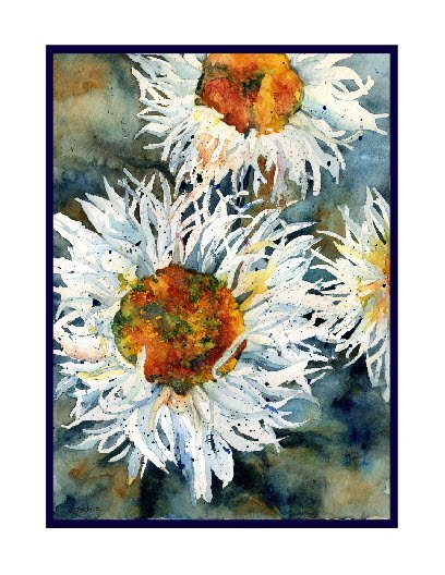 Shasta Daisies Watercolor Note Cards