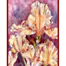 Orange Irises Watercolor Note Cards