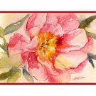 A Peony Watercolor Note Cards