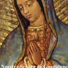 Religious Liberty Prayer Card - Our Lady of Guadalupe - Spanish #RL-OLOG-SPN