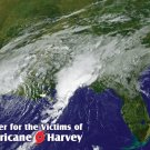 Prayer for the Victims of  Hurricane Harvey***ONEFREECARDFOREACHONEORDERED*** PC#638