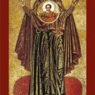 Our Lady of the Sign Prayer Card PC#663
