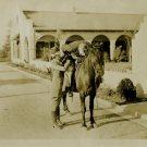UNKNOWN Silent Film HORSE Org Movie Still PHOTO E927