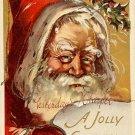 c.1908 CHRISTMAS Santa Glitter HOLLY postcard P153