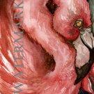 Flamingo Summer Art Postcard