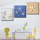 Stretched Canvas Art Animal Sea Star Set of 3 - 352M