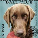 Dog Breed Animal Canvas Print - MPF011
