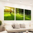 Stretched Canvas Art Landscape Green Tree Set of 3 - YAYI002