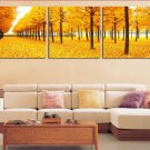 Stretched Canvas Art Landscape Yellow Trees Road Set of 3 - YAYI003