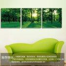Stretched Canvas Art Landscape Green Tree Set of 3 - YAYI007