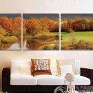 Stretched Canvas Art Landscape Set of 3 - YAYI307
