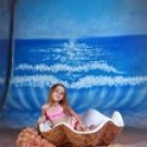 Giant Shell Set  Photography Prop