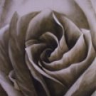 RS-1 Special 10x20 Hand Painted Scenic Muslin Backdrop