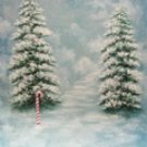 XM-36 Special 8x10 Hand Painted Scenic Muslin Background