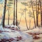 005  Premium Hand Painted Scenic Backdrop Studio Background